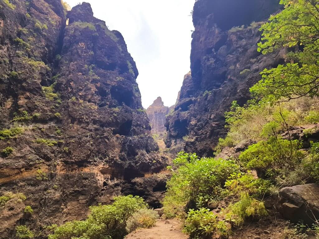 Masca Valley in Tenerife - Things You Must Know Before You Go -