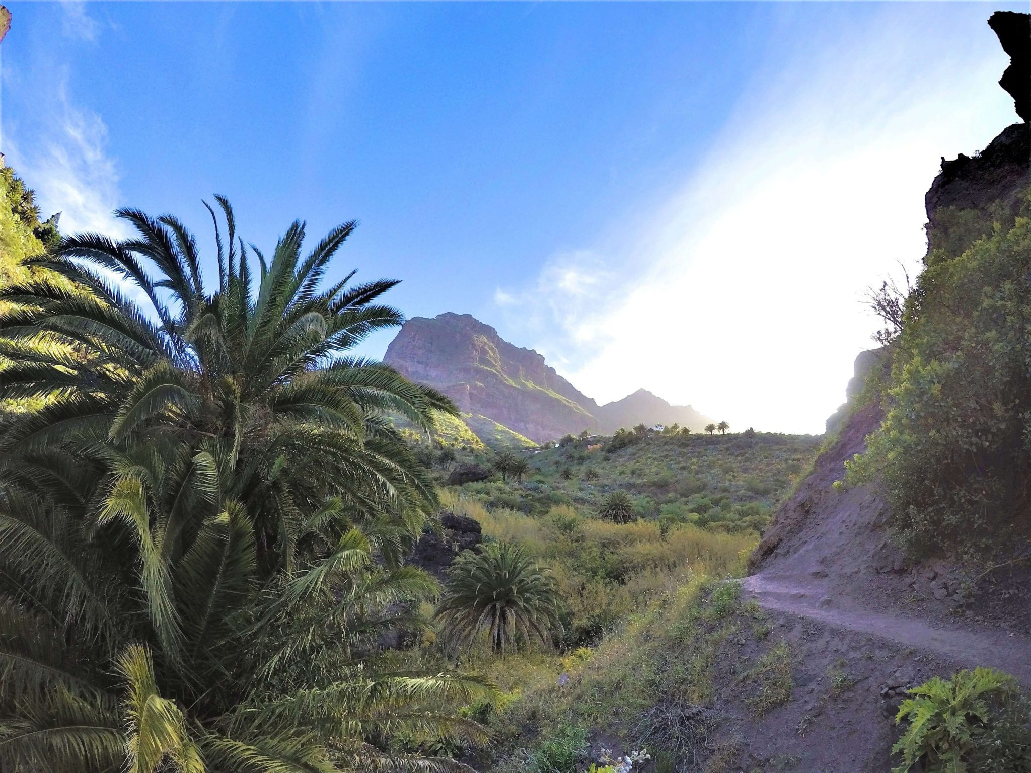 Masca Valley, Tenerife